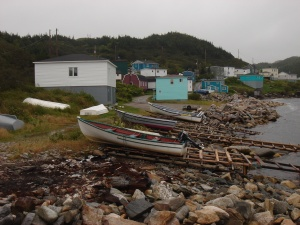 harbor le cou, home to nifty pierce