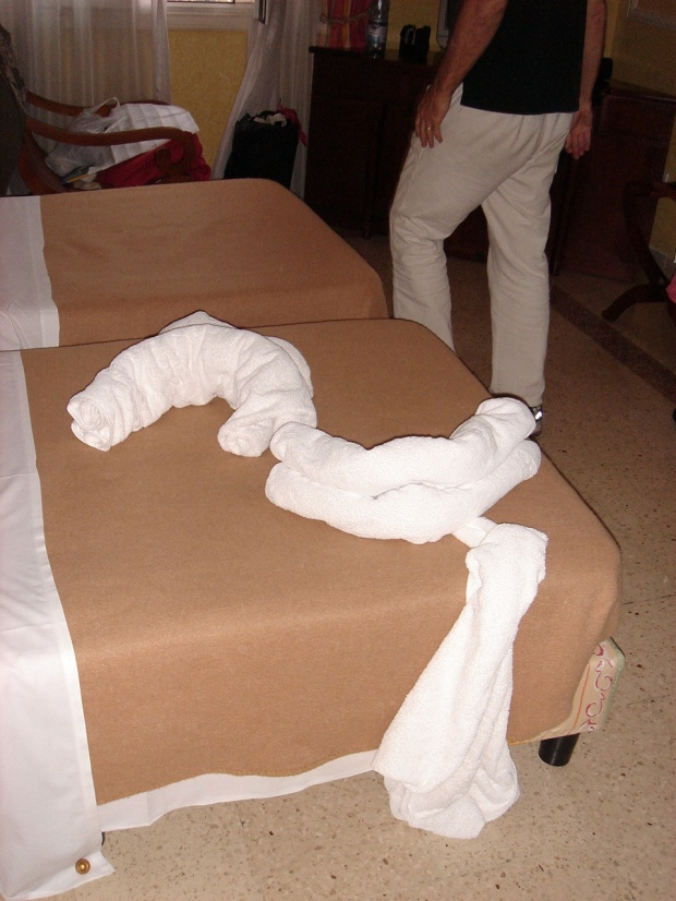 towel-sculpture made by our hotel maids