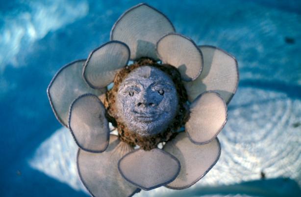 moonflower, a circular being
