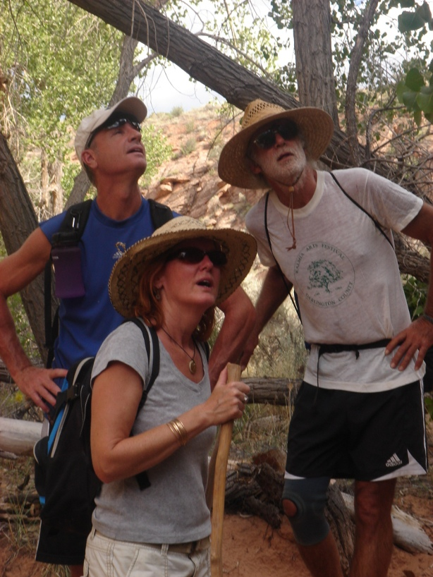 what could these hikers be looking at?