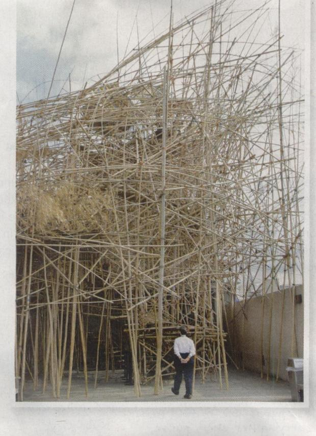 Big Bambu by Starn Twins
