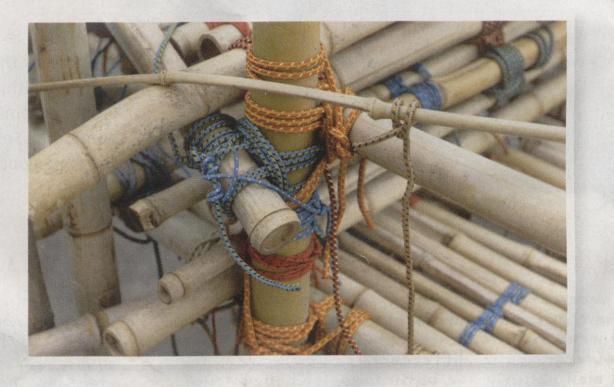 Big Bambu (detail) by Starn Twins